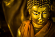 The Lord Buddha Statue In The ...