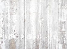 White Wood Texture Background Coming From Natural Tree. Abstract Wooden Panel With Beautiful Patterns.Background For Interior