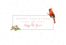 Christmas Card With Red Cardinal Winter Bird And Snowflakes Background