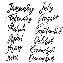 Hand Drawn Set Of Months. Modern Dry Brush Lettering. Names Of The Months. Vector Illustration. Handwritten Grunge Inscription.