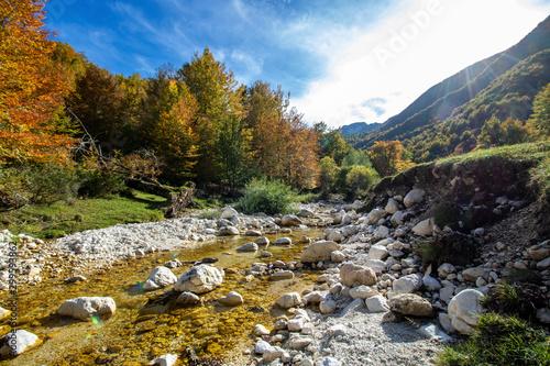 Canvas Prints Forest river Abruzzo national park