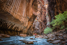 Hiking In The Narrows, Zion Na...