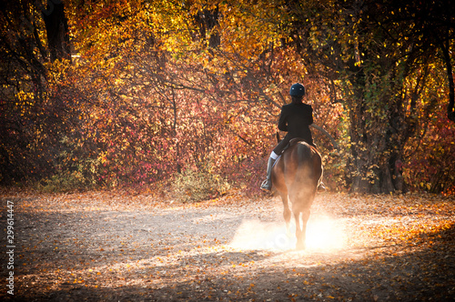 Fotografie, Tablou A Women Riding Horse In A Field On A Beautiful Autumn Morning