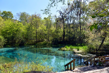 Located In Florida, Ichetucknee Springs State Park Is A Popular Place For Tubing, Kayaking And Other Water Sports.  The Beautiful Turquoise Headwaters Are A Magical And Contemplative Place To Visit.