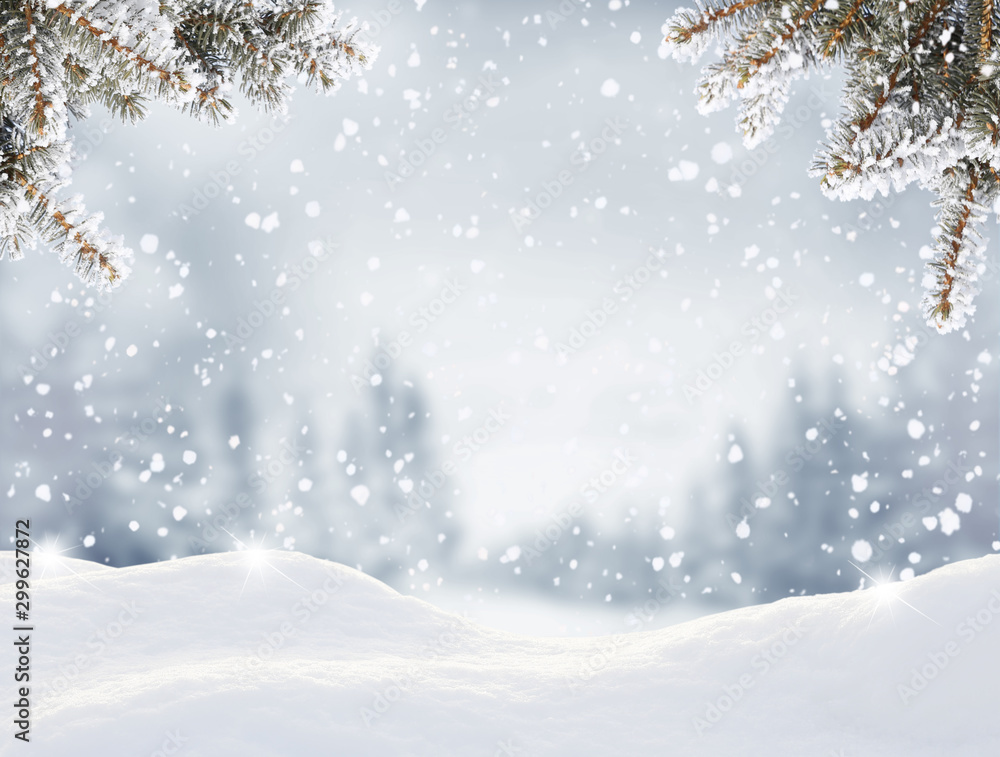 Fototapety, obrazy: Snowfall in winter forest.Beautiful landscape with snow covered fir trees and snowdrifts.Merry Christmas and happy New Year greeting background with copy-space.Winter fairytale.