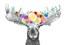 Moose With Flowers In Antlers,...