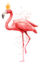 Cute Pink Flamingo Bird Wearin...