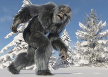 Yeti Winter In The Forest 3d I...