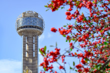 Famous Dallas Tower And Red Be...