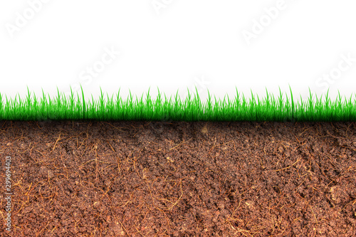 Abstract image of Cross section brown soil and green grass in underground Fototapet