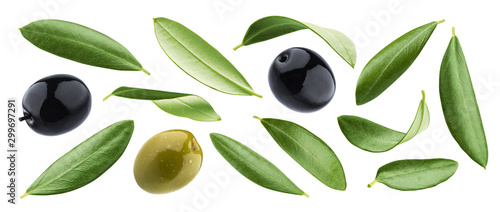 Fototapeta Black and green olives with leaves isolated on white background obraz