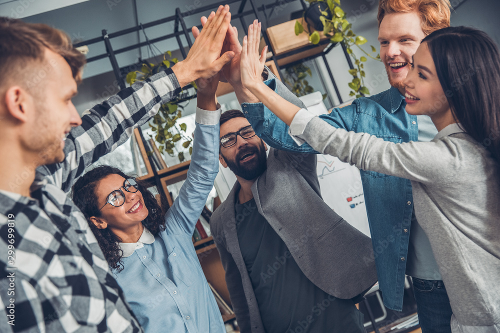 Fototapeta Startupers working at office together standing giving high five success