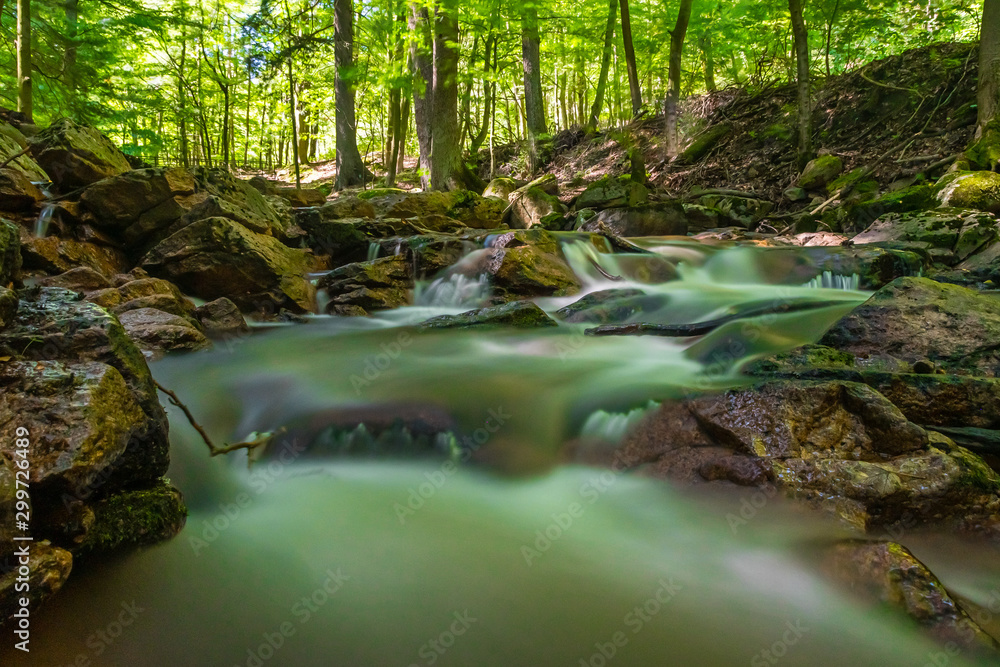A gently rushing stream with small stones and rapids in a sun-drenched deciduous forest with bright green.