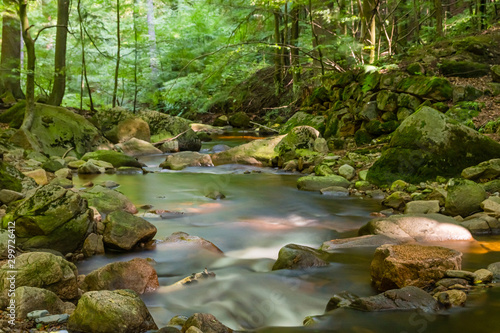 Fototapety, obrazy: A gently rushing stream with small stones and rapids in a sun-drenched deciduous forest with bright green.