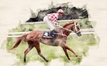 Racing Horse And Jockey In Wat...