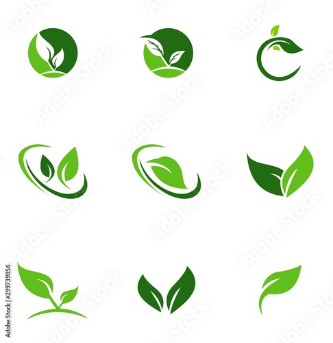 Fototapeta set collection leaf logo design obraz na płótnie