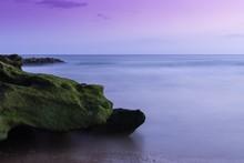 Closeup Shot Of A Mossy Rock N...
