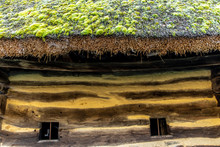 Close Up Of Thatched Roof