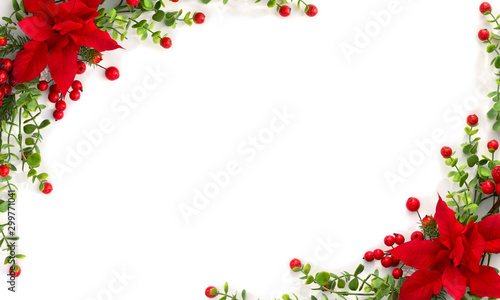 Christmas decoration. Frame of flower of red poinsettia, branch christmas tree, red berry on a white background with space for text. Top view, flat lay - 299771041