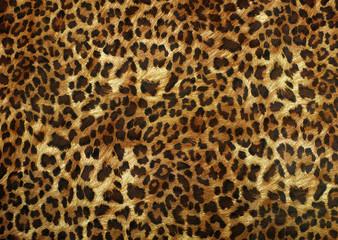 Fototapeta Pantera leopard skin texture