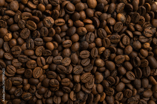 Small coffee beans texture background Canvas Print