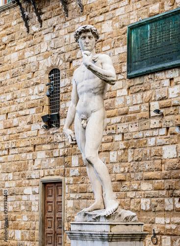 Deurstickers Historisch mon. David Statue, Piazza della Signoria, Florence, Tuscany, Italy