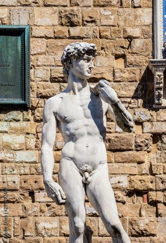 Fotobehang Historisch mon. David Statue, Piazza della Signoria, Florence, Tuscany, Italy