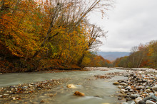 Mountain River Bed In Autumn