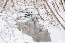 A Small River In Winter . Winter Landscape. Water In Rivers. Winter Trees. Snow.