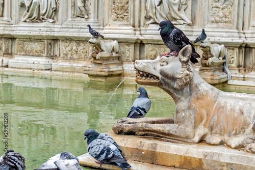 Fotografie, Tablou Siena Detail Fonte Gaia in piazza del campo