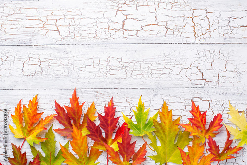 Fotografía Autumn background with maple leaves