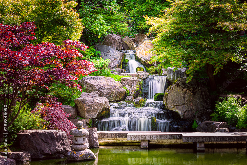 Fototapeta Waterfall long exposure with maple trees and bridge in Kyoto Japanese green Garden in Holland Park green summer zen lake pond water in London, UK