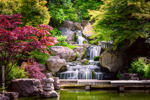 Waterfall long exposure with maple trees and bridge in Kyoto Japanese green Garden in Holland Park green summer zen lake pond water in London, UK - 299846090
