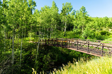 Snowmass Aspen Village Town At Brush Creek Trail In Colorado Downtown With Bridge And Nobody In Summer View