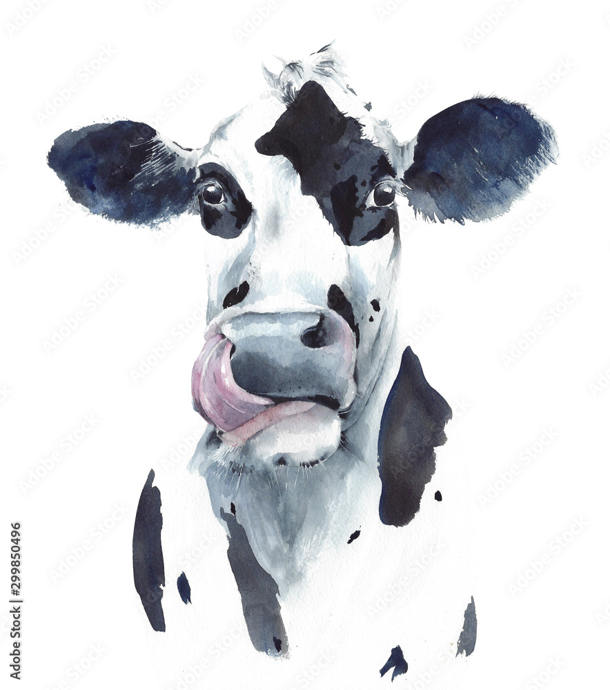 Fototapety, obrazy: Cow head portrait black and white farm animal watercolor painting illustration isolated on white background
