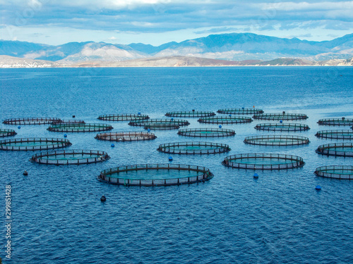 Valokuvatapetti Sea fish farm nets. Cages for fish farming sea bream and bass.