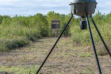 Deer Feeder Down Range From Deer Blind In Clearing