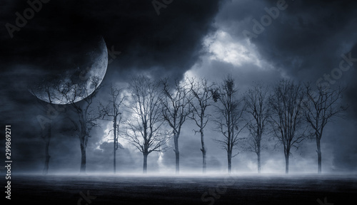 Deurstickers Nachtblauw 3D rendering abstract dark forest. Gloomy dark scene with trees, big moon, moonlight. Smoke, shadow. Abstract dark, cold street background. Night view.