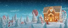 Amazing Fairy Christmas House