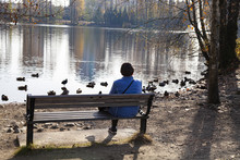 Lady Sitting On Bench By Lake Shore Watching Duck, Relaxing Herself