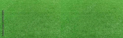 green-grass-texture-background-panorama-picture