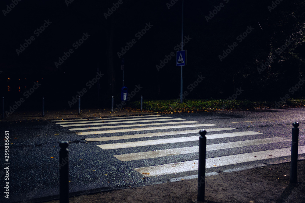 Fototapety, obrazy: City street with blurred cars and wet asphalt closeup of a white pedestrian cross over
