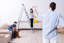 Young Family Doing Home Renovation