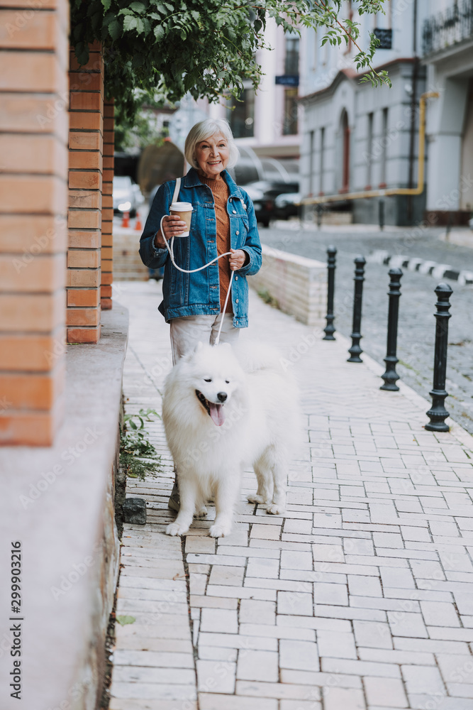 Fototapety, obrazy: Smiling charming old woman walking her fluffy dog