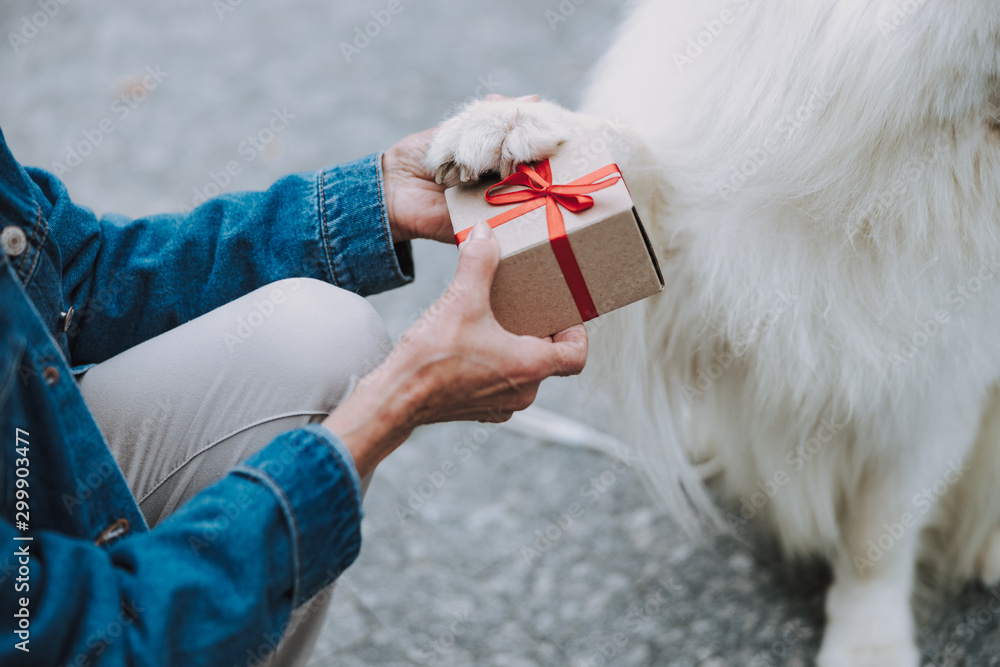 Fototapety, obrazy: Caucasian woman keeping palm of her pet outdoors
