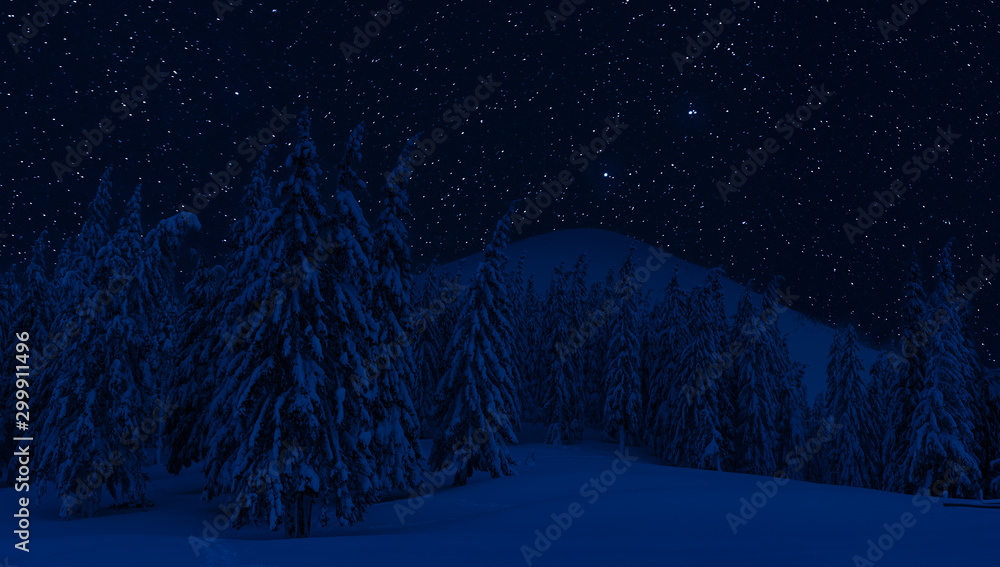 Fototapety, obrazy: Night landscape with snow and stars