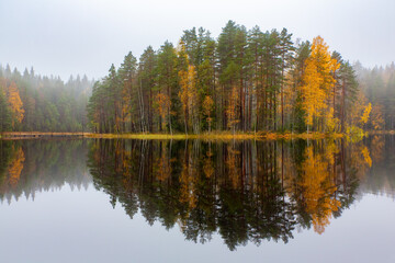 Fototapeta Rzeki i Jeziora Finnish forest reflecting in water during fall