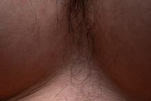 Photo Of Man's Hairy Chest, Cl...