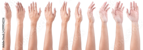 Obraz GROUP of Male asian hand gestures isolated over the white background. Soft Grab Action. - fototapety do salonu