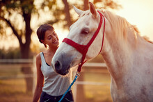 Smiling Woman Petting A  Horse...